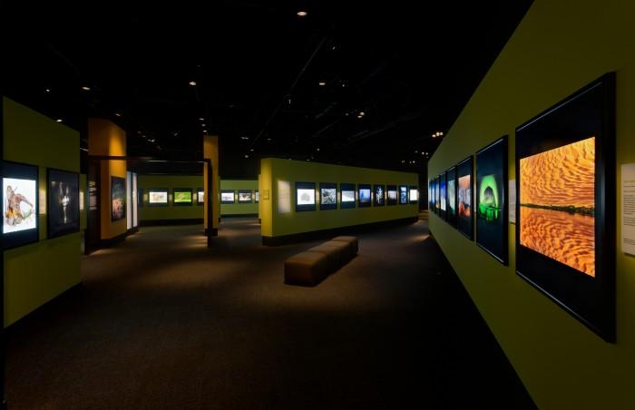 Views of the Wildlife Photographer 2012 Exhibition